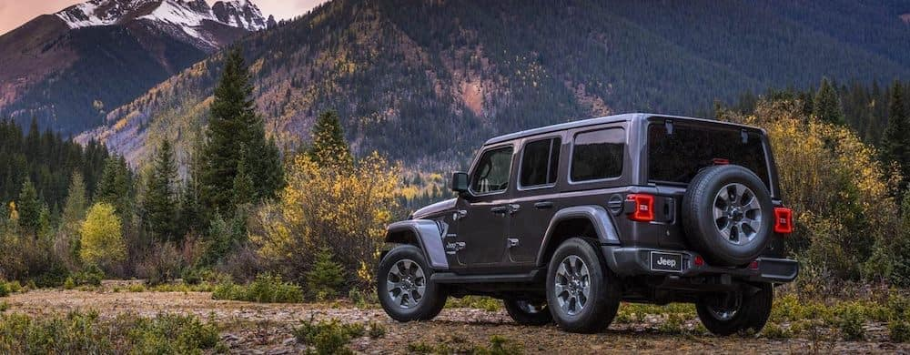 2019 Jeep Wrangler with mountain view