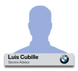 Luis Cubille