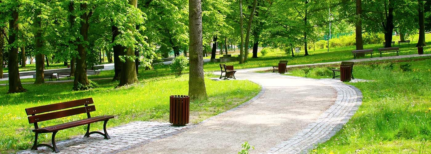 Walkway and Bench Through Park