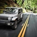 2019 Jeep Wrangler forest