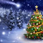 Christmas Tree Illustration Against Snowy Pinewood Background