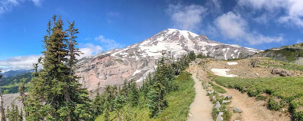 Mount Rainier National Park trail in summer season.