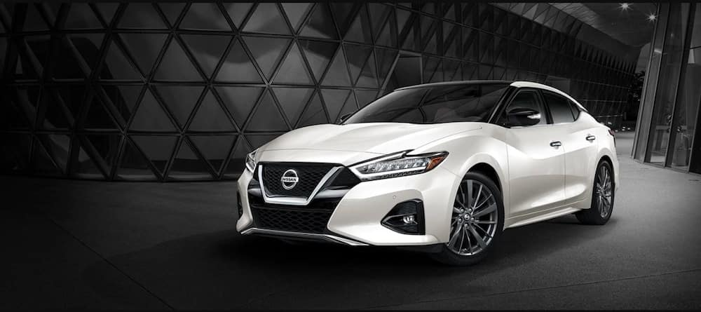 White 2019 Nissan Maxima with black background