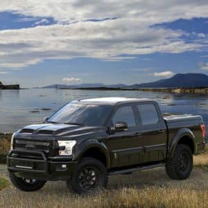2018 Ford F-150 Tuscany Black Ops Wetlands