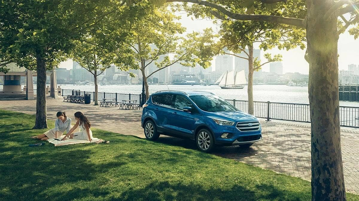 Picture of 2018 Ford Escape Gallery in the park, under trees