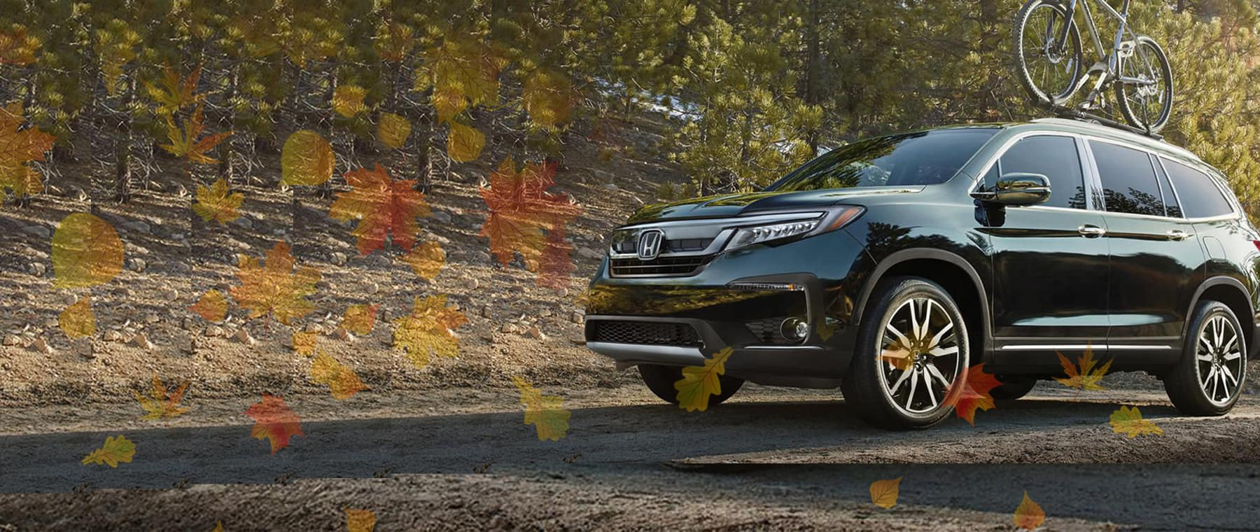 Click Here To FALL Into Major Savings At Hillside Honda U003e
