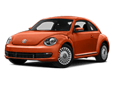 Beetle copy