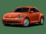 Beetle copy
