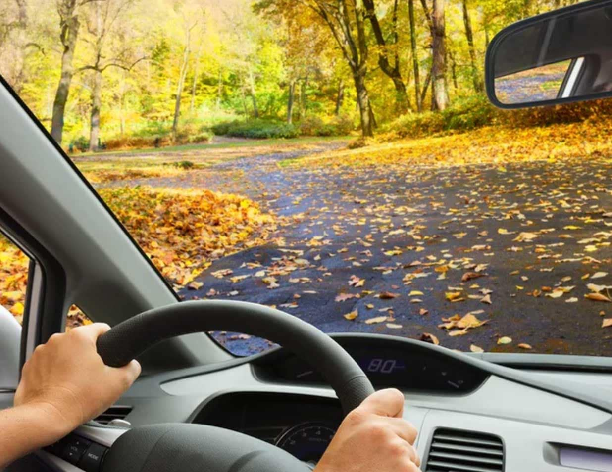 blog-fall-driving