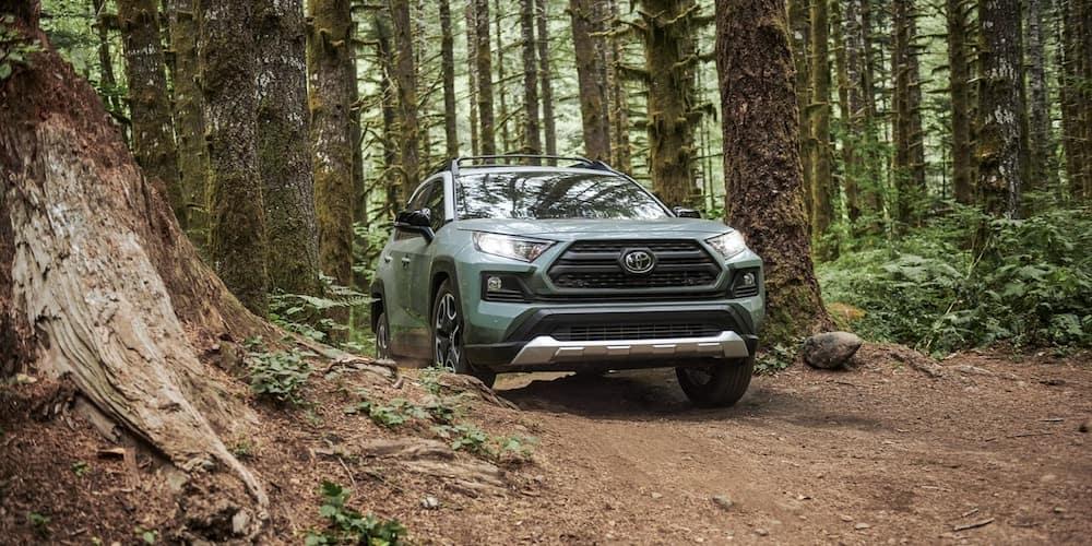 2019 Toyota RAV4 Adventure in Woods