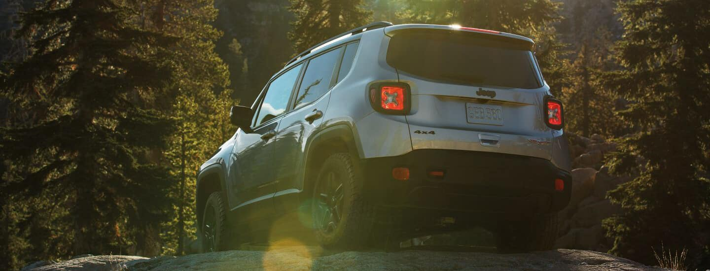 Jeep Renegade in Forest
