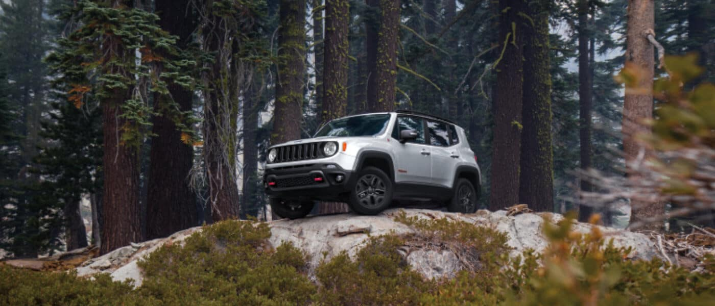 2020 Silver Jeep Renegade Parked on a Hill