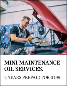 MINI MAINTENANCE OIL SERVICES.