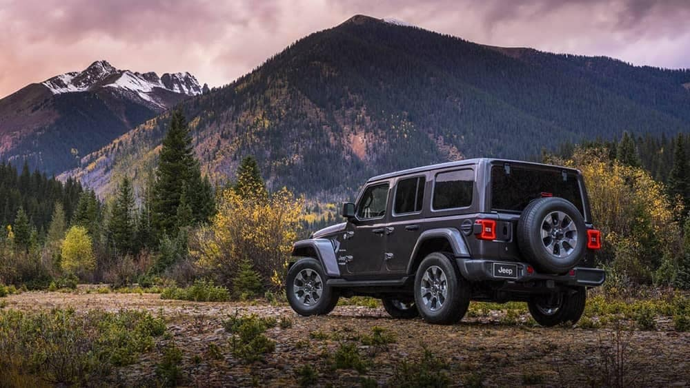 2019 Jeep Wrangler parked in front of mountains