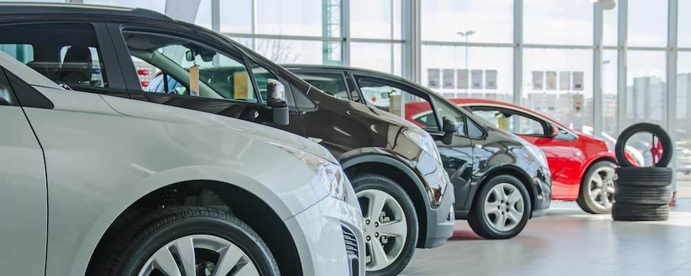 Cars lined up in dealership