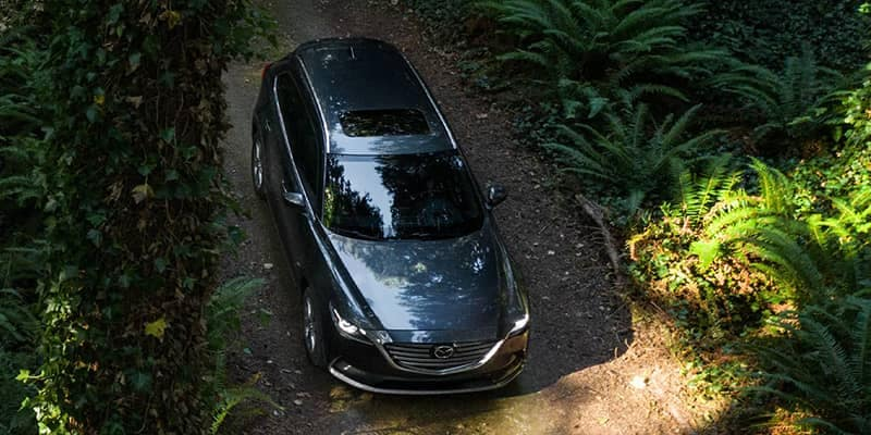 2020 Mazda CX-9 Driving in Woods