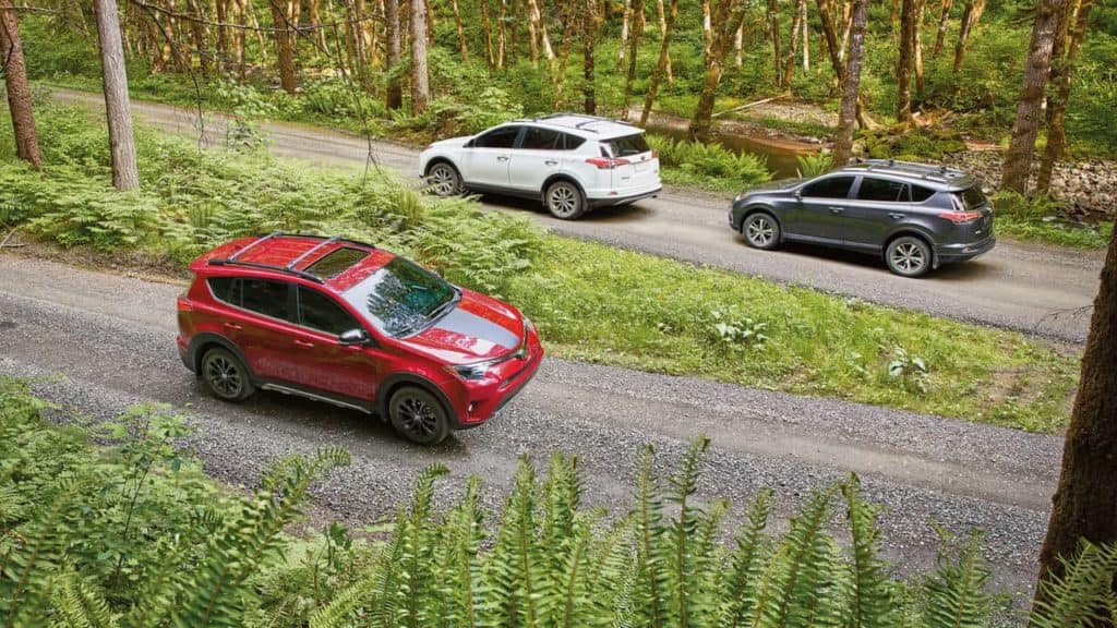 2018 Toyota RAV4 in the forest