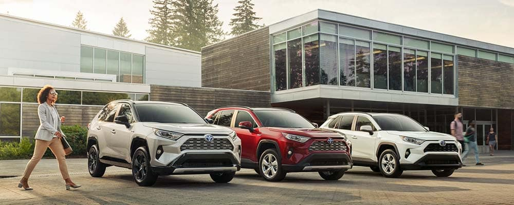 2019 Toyota Rav4 Colors Exterior And Interior Options Toyota
