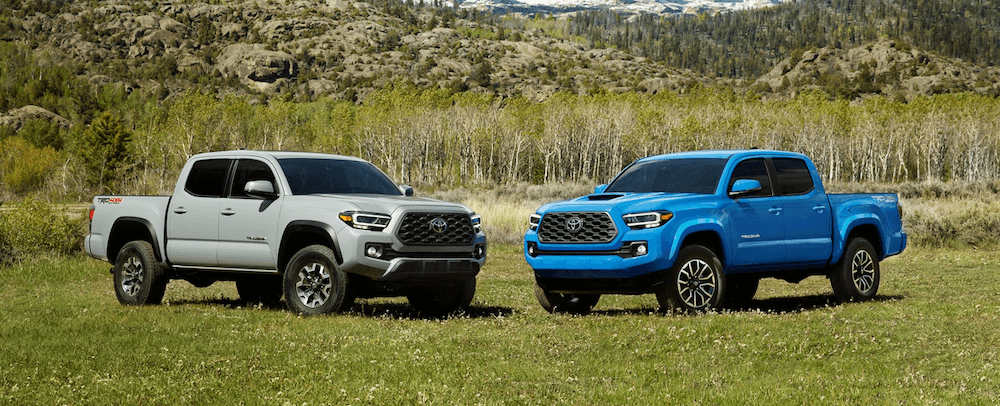 2020 Toyota Tacoma models in blue and silver colors