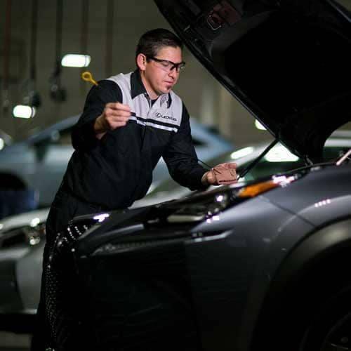 Lexus Technicians