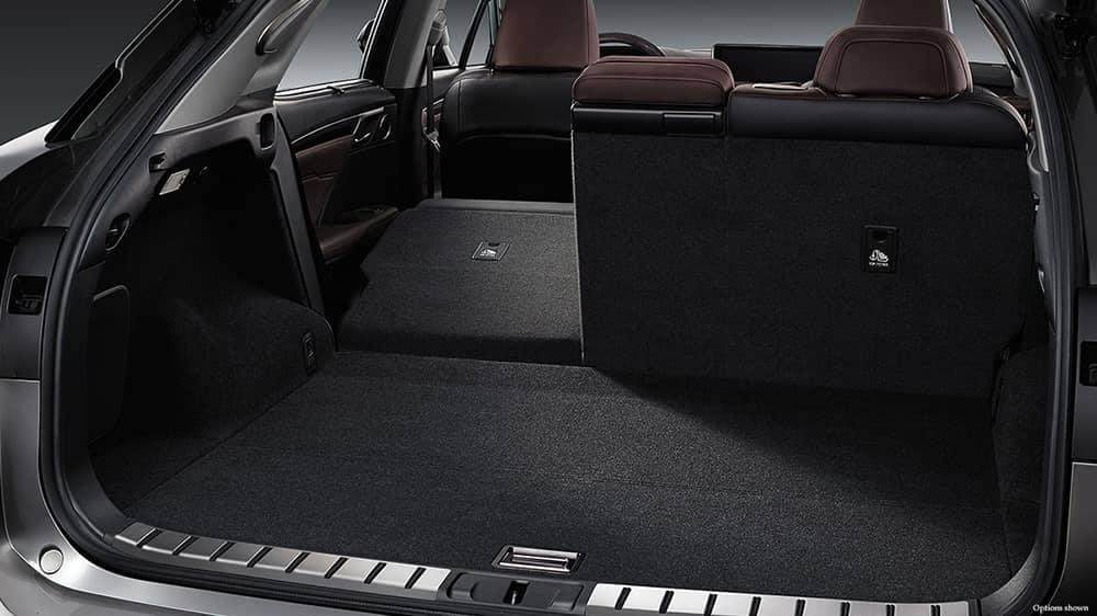 2018 Lexus RX Space