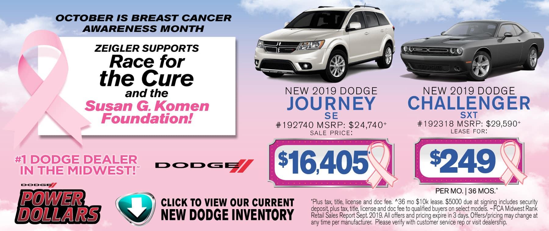Breast Cancer Journey Challenger