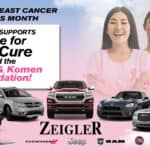 Breast Cancer Model Lineup